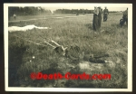 orig. WWII Photo - dead german Pilot with parachute